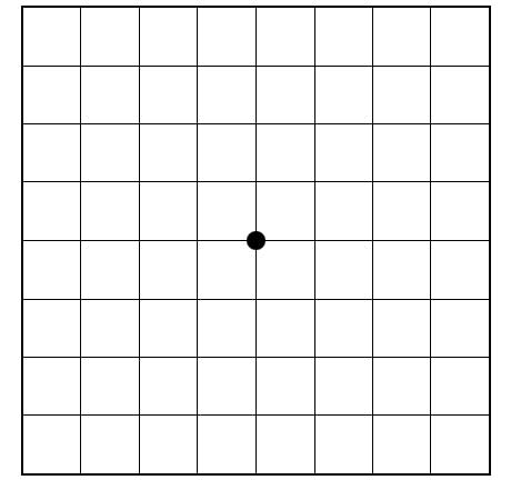Picture of a normal Amsler grid