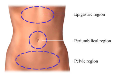 Three regions used to describe abdominal (belly) pain