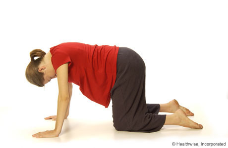 A woman kneeling on all fours (on her hands and knees)