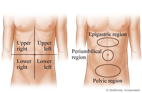 Abdominal areas where pain may occur